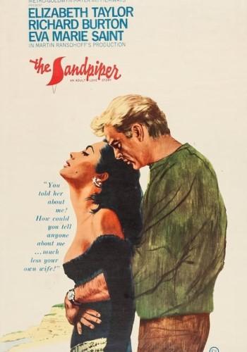The Sandpiper-